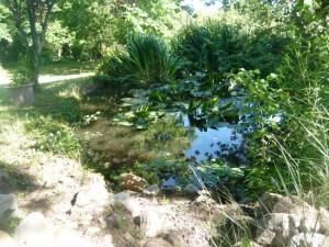 location carcassonne vacances gite piscine notre jardin